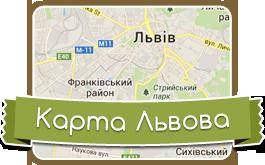 Lviv map