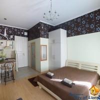 комната и кухня, общий вид