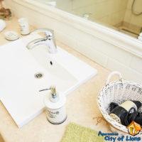 Apartment for rent, Lviv, center, st Dragomanova 4, bathroom, interior details - wash basin