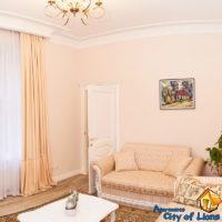 Посуточно квартира центр Львова, ул Драгоманова 4, гостиная, общий вид