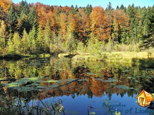 озеро журавлиное