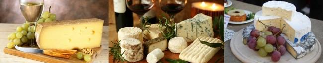 праздник сыра и вина львов | City of Lions