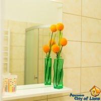 Посуточно квартиры во львове, ул Римлянина 12, ванная комната, детали интерьера